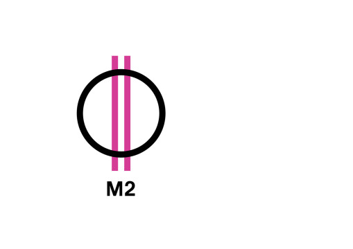 02_m2gy_b_B-01